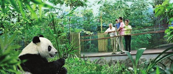 SINGAPORE SPOTLIGHT ON SINGAPORE WITH DIETHELM TRAVEL Wildlife Reserves Singapore Singapore has become one of the world s most prosperous countries, with tourism playing a major part with several new