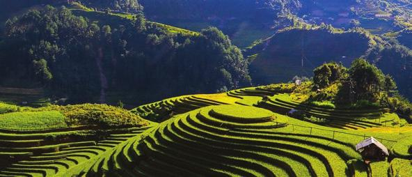 SPOTLIGHT ON VIETNAM WITH DIETHELM TRAVEL VIETNAM Vietnam boasts a good supply of ancient culture and luxury accommodation, and is now well connected with more direct flights.