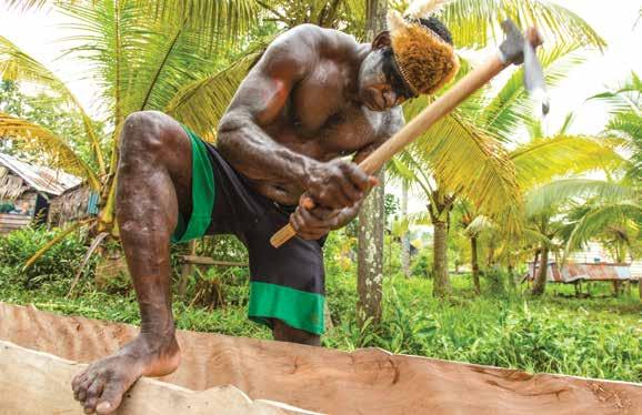 carving a dugout long boat; nutmeg, indigenous to