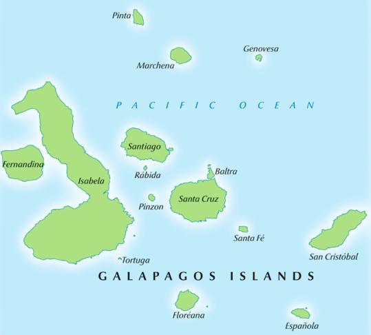The main Galapagos airport is on tiny Baltra Island, and unless you ve chartered a helicopter to whisk you away from the airport to elsewhere, you will inevitably experience your first boat ride soon