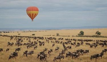DAY FOUR: Serengeti National Park Your Balloon Safari adventure starts early morning when you depart your lodge