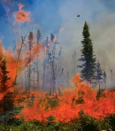 Their mission is the same: stop wildfires before their destructive energy destroys the