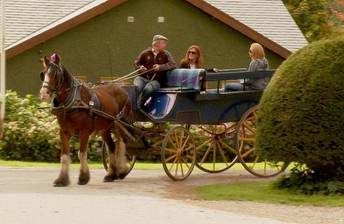 Killarney Jaunting Cars Dingle Dolphin Cruise Warner s Thoresby Hall Ollerton, Nottinghamshire Mon