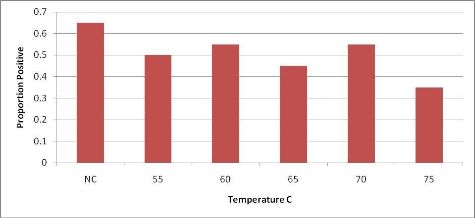 Figure 5. Proportion of internal steak samples positive for E. coli O157:H7 inoculated steaks after 28 days of storage under refrigerated conditions.