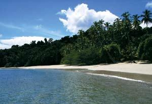 Coiba National Park (CNP) in Panama encompasses more than 2,700 square kilometers of coral reefs, mangroves, islands, beaches and forests.