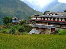 As with the Ghandruk trek, trekkers begin their trip at Pokhara s Nayapul, walk along the banks of the Modi River and get to Biret hanti a large village with many shops and teahouses.