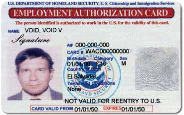 The notation A-12 or C-19 appears on the face of the Employment Authorization Document (Form I-766) under Category.