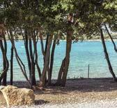 The company manages the camping Mon Perin located 5 km from