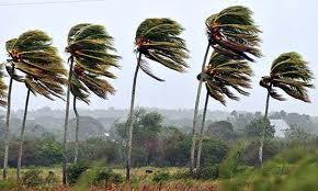 Cuba s Climate Cuba s Climate can be characterized as tropical but it is controlled by the trade winds.