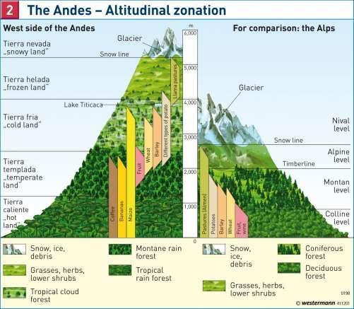 Vertical Climate Zones The diagram shows the main climate zones as