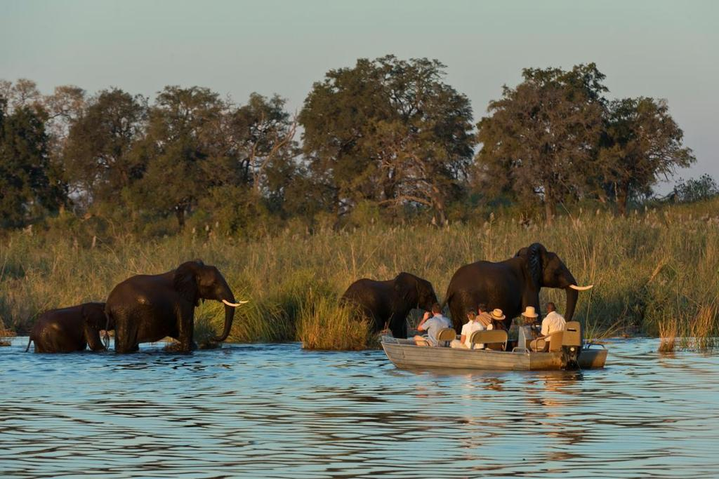 Zambia Zambia, with its endless source of adventure opportunities, is a carefully guarded secret by safari