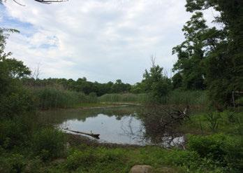 N LEGEND WETLAND NATURE AREA LAWN ATV vehicle use is damaging many fragile habitats and is not permitted.