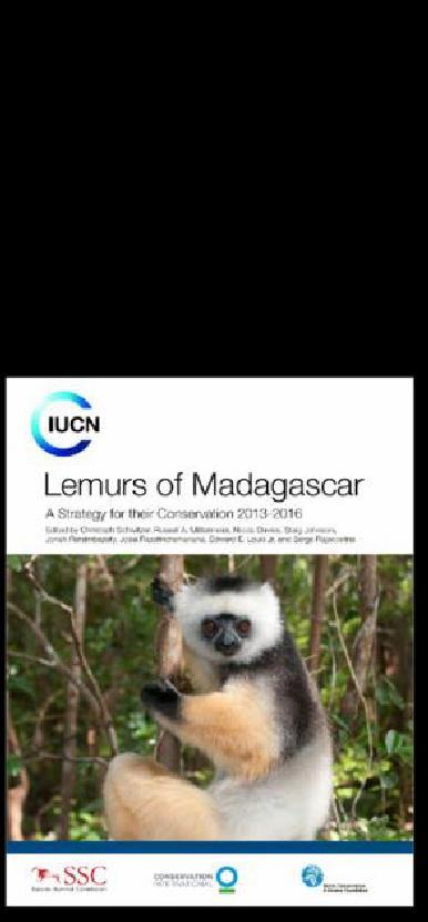 But lemurs also have another characteristic: they are the most threatened mammal group on Earth.