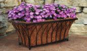 Mount to wall or deck rail for a stunning floral display.