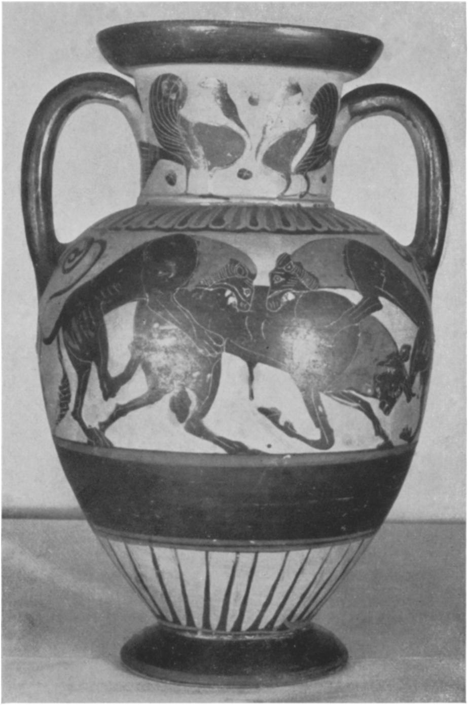 The accession number of the amphora is 46.I.5. Its height is 41/16 in. (35.7 cm.); its diameter is 91/2 in. (24.2, cm.). In two places the surface shows signs of having been in contact with two other vases during the firing.