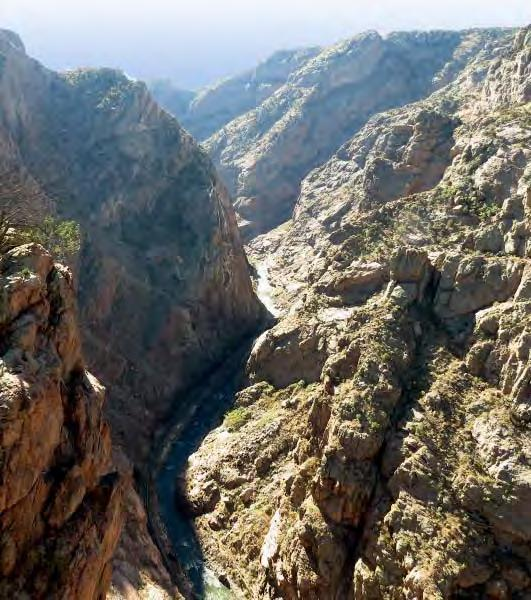 The Royal Gorge Recreation Area As recommended in the Vision Plan, an active recreation area could be created at the Royal Gorge Park.