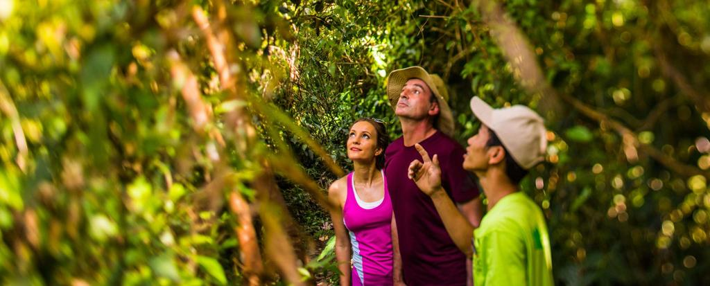 TREKKING IN THE JUNGLE Trekking is an exclusive activity that can be only found during