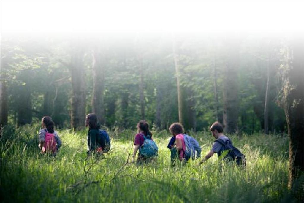Time spent living in the wild offers a fantastic opportunity for students to interact away from the distractions of everyday school life, taking them out of their comfort zones and encouraging both