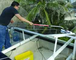 The ProCurve Solar System allows you to reach and clean even the most difficult to
