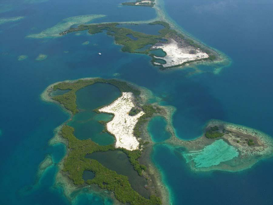 April 2007 Extensive loss of mangroves occurred on Fisherman s and Manatee s Cayes between April 2006 and 2007.
