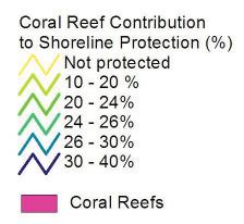 Key Findings This study evaluated the average annual contribution of reef- and mangrove-associated tourism, fisheries, and shoreline protection services to the economy of Belize.