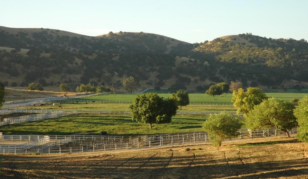 entire ranch. UTILITIES: Ranch utilizes a private septic system, bottled gas and developed electric.