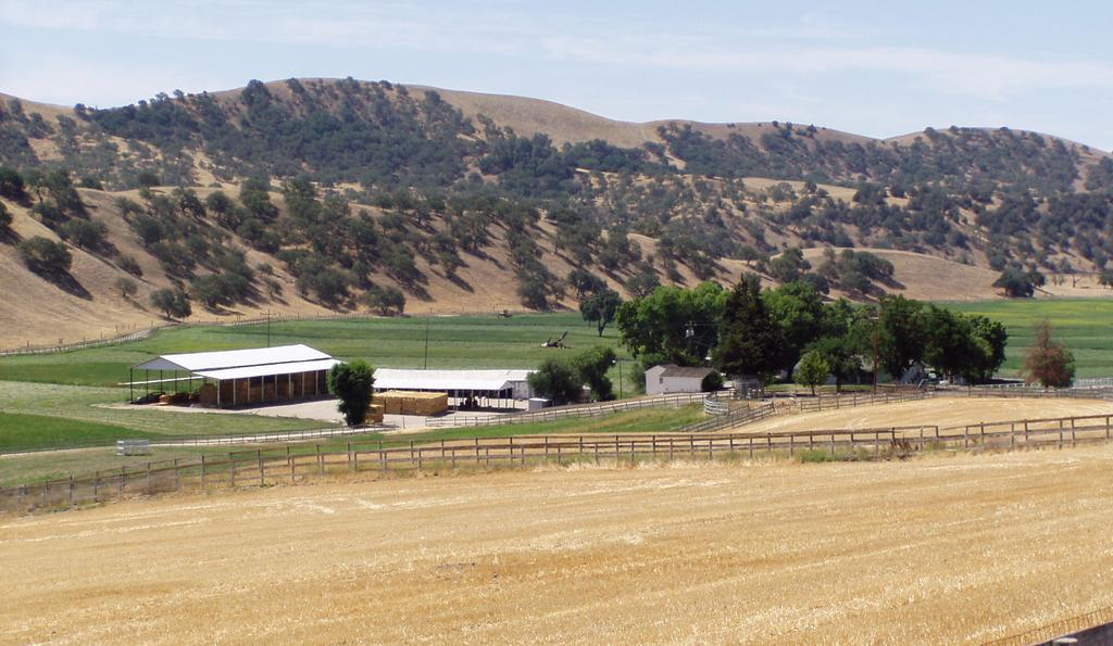 Improvements Ranch is comprised of 891± acres (APN: 424-131-079-081, 086-088) and zoned Agriculture.
