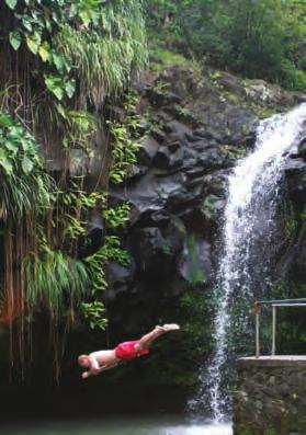 Bruno is happy to organise trips to the magnificent rainforest that covers much of central Grenada, to