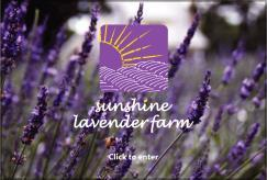 Experience & Inspire Customers to Tell Friends Farm fresh lavender for body, garden,