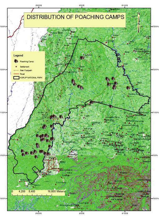 Analysis of the data would result to the production of geo-spatial distribution of wildlife, poaching and the gathering of Non Timber Forest Products (NTFPs) such as Bush Mango (Irvingia sp), Cane