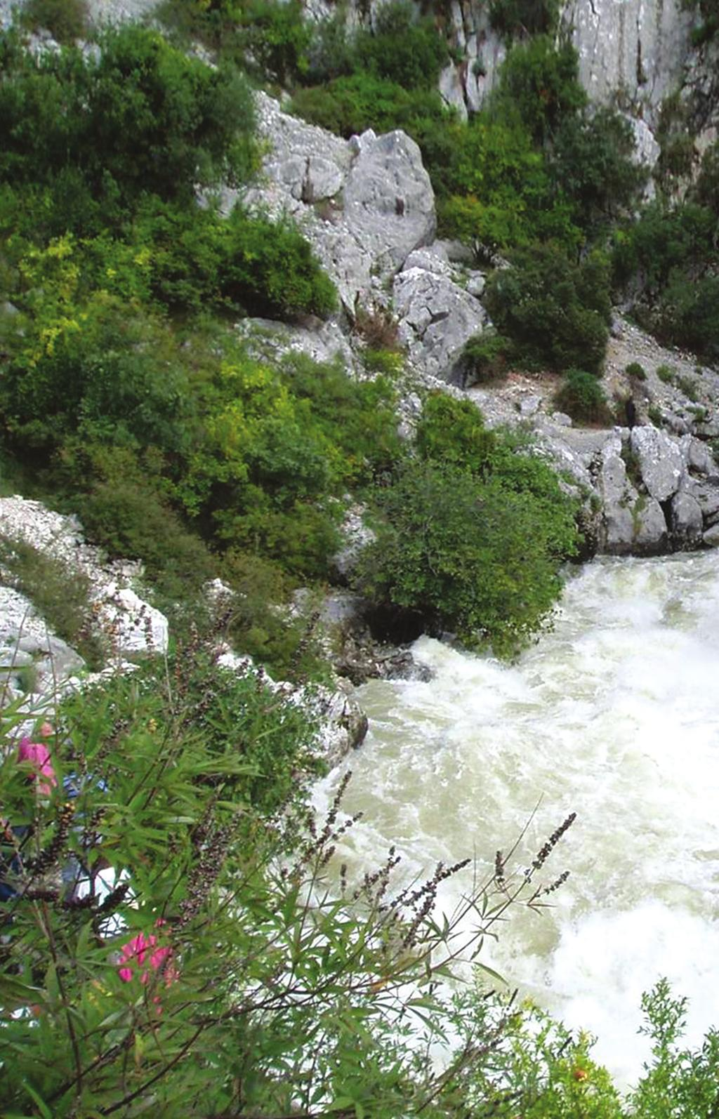 the results Scientific knowledge for the Dinaric Karst Aquifer System was enhanced and harmonized.