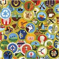 Merit Badge pre requisites and par als Age & Rank Restric ons If a scout has done pre requisites, they must show proof of what they have done.