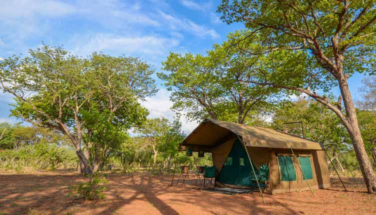 Tents are spacious Meru-style canvas structures with en suite bush bathrooms, bucket showers, and pit latrines.