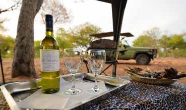 Day 2 Day trip to Baines Baobabs (seasonal) Sundowner game drive After a comfortable night under canvas, you will receive a 05h30 wake up call with warm water wash basins outside your tent and the