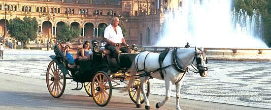 First, the group will enjoy a carriage ride along the riverside, to Plaza España and