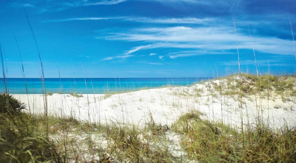 Bay County TDC and Panama City Beach CVB Organization Structure Marketing and managing a large destination requires a highly skilled team effort.