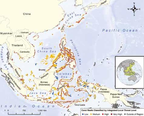 More than 65% of reefs in the region are at risk from local threats, with one-third rated at high or very high risk.
