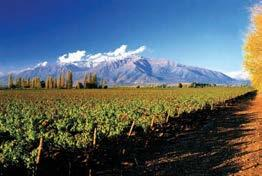 "! For adventure lovers, the Maipo Valley""offers white-water"
