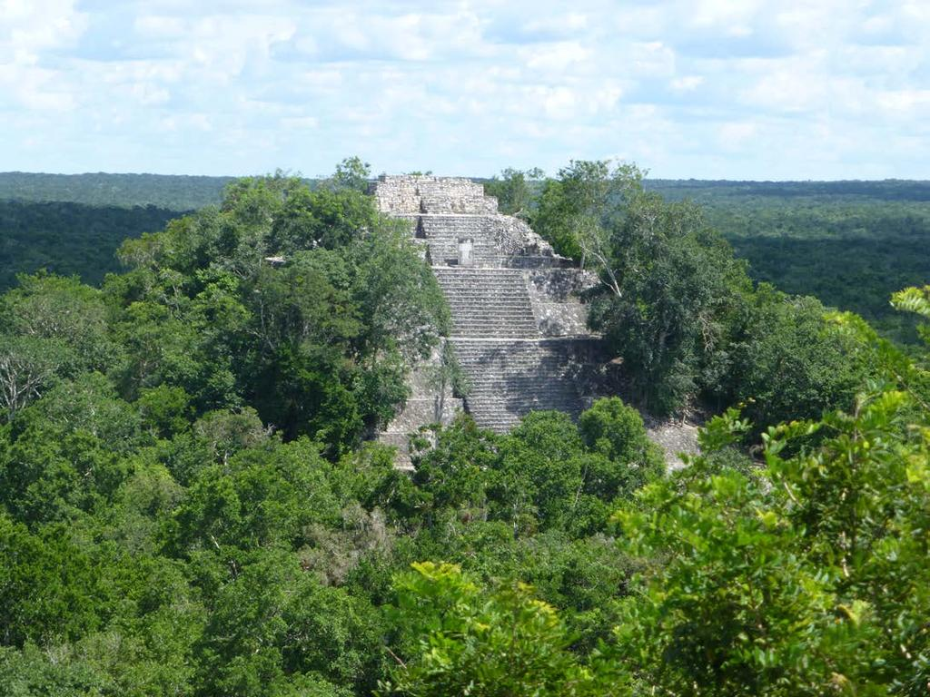 LATIN AMERICA / CARIBBEAN ANCIENT MAYA CITY AND PROTECTED FORESTS OF CALAKMUL,