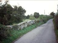 Ballyboodi 12802939 313 House (Collis