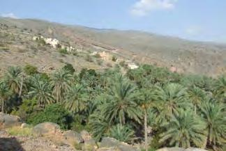 Hamra, on the south side of the Western Hajar mountains.