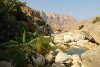 from Sur to Muscat 215km-2h20 The highway follows the coast, between the Gulf of Oman and the Eastern Hajar range, and offers pretty views on the sea and the