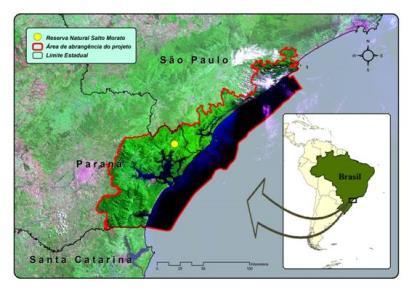 Conservation Strategies!!! Lagamar is a part of the coastal strip spreading on the coasts of Paraná and the Southern coast of the state of São Paulo.