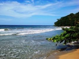 On this day of your vacation we ll take you to the Caribbean Coast of Costa Rica, considered by nature lovers like us, as one of the most beautiful parts of the country, which remains green all