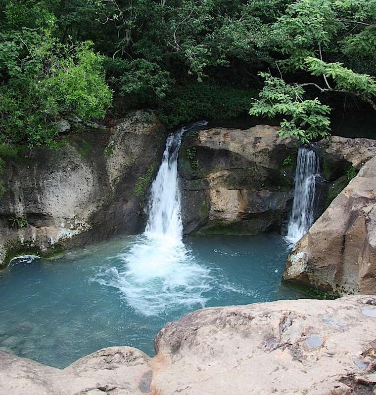 Borinquen Experience Experience enchanting forests,