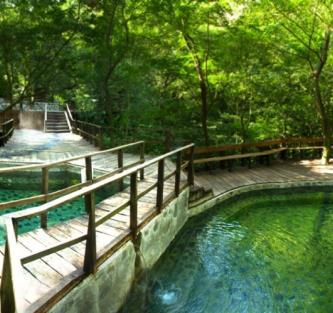 Then, take a horseback ride to the thermal waters, steam