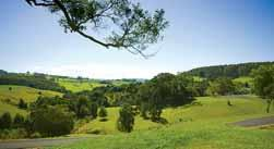Extraordinary rural views With acres of north eaerly aspt Surrounded by pical palm gardens 15m saltwater l pool Swimming holes Proximity to Bangalow & Byr Bay Immense potential! For sale 1,3,000.