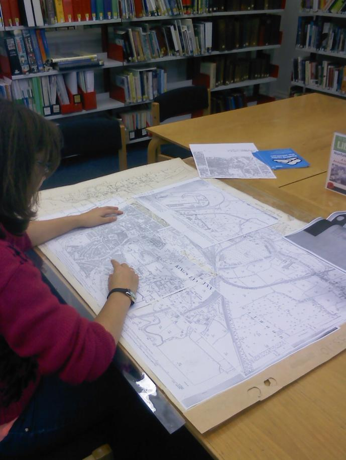 11. 23 rd October 2014: Placement officer, Louisa Rooks, working in Lynn Library on