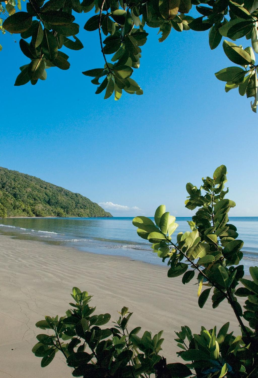 CAPE TRIBULATION YHA BUDGET GROUP ACCOMMODATION - 2018 Nestled deep within the Daintree Rainforest, Cape Tribulation YHA provides budget group accommodation at one of Australia s most famous beaches.