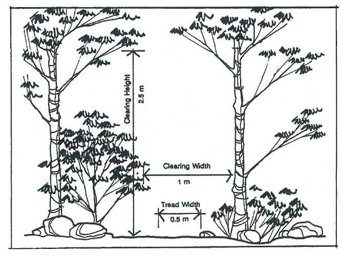 Illustrations Figure 18: Clearing width and height for hiking / walking trail Figure 19: Gradients for accessible pathway ramp Criteria Range Clearing Width Clearing Height Tread Width Trail Surface